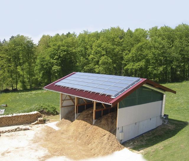 Solare Trockenanlage für Sägemehl in Deutschland
