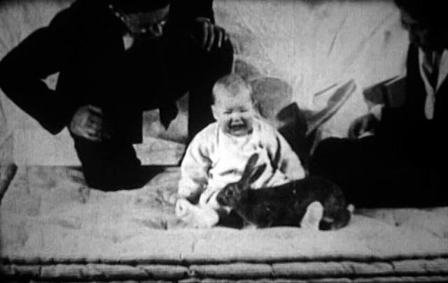 Der US-amerikanische Forscher John B. Watson, Begründer der Verhaltenspsychologie, setzte das Baby Albert 1920 Ratten und Kaninchen aus und erschreckte es.