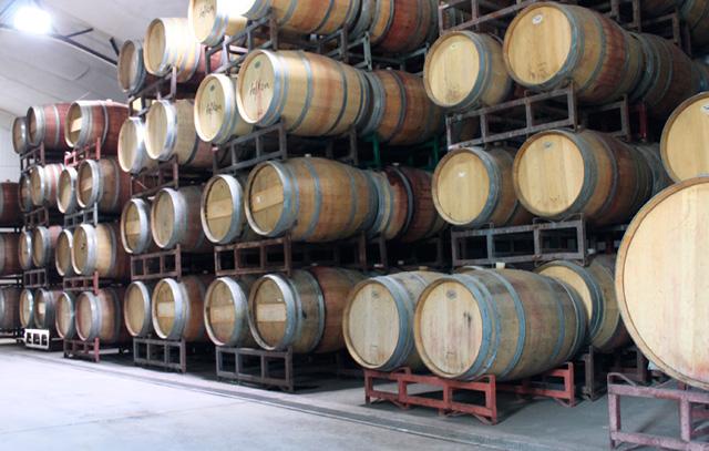 Barrique-Lager: Die Eichenfässer geben Gerbstoffe (Tannine) an den Wein ab.
